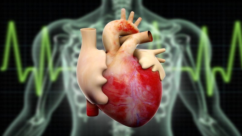 علل کاردیومگالی یا بزرگی قلب   متخصص قلب اصفهان